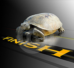 You are the winning turtle with asset allocation, compared to all other investment strategies!